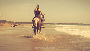 special_horseback_2