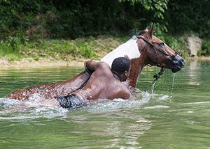 special_horseback_4