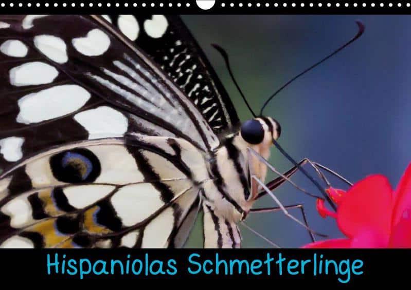 Hispaniolas Schmetterlinge